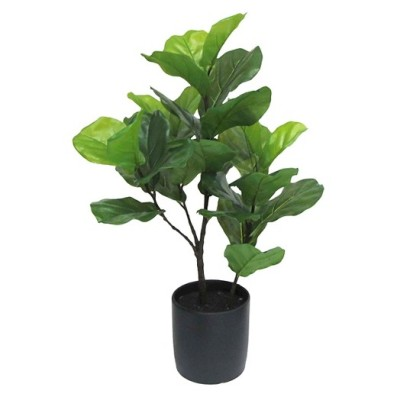Target Fiddle Leaf Fig Tree