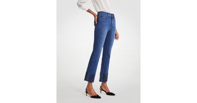 Ann Taylor Denim